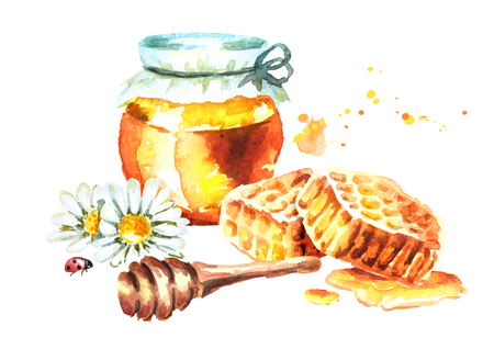 Fresh honey with Honeycombs, camomile and honey dipper. Watercolor hand drawn illustration Zdjęcie Seryjne