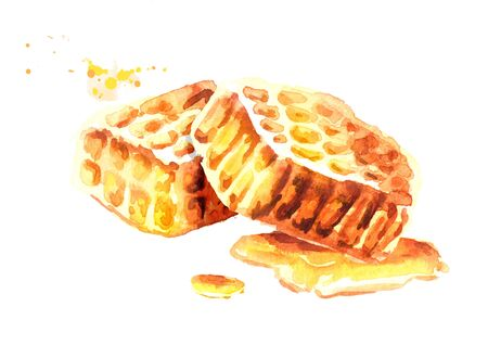 Honeycombs composition. Watercolor hand drawn illustration
