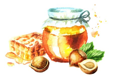 Fresh honey, honeycomb and hazelnut. Watercolor hand drawing illustration