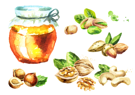 Fresh honey and different kind of nuts set. Watercolor hand drawn illustration Stock Photo