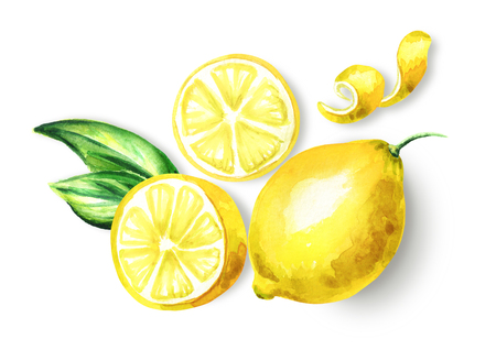 Fresh Lemon fruit top view composition. Watercolor hand drawing illustration