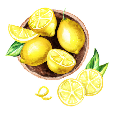 Fresh Lemons fruit in the platter top view composition. Watercolor hand drawing illustration