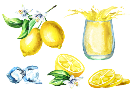 Lemon juice set with splash in the glass, fruits adn ice cubes. Watercolor hand drawing illustration
