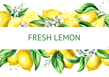 Fresh lemon horizontal illusrtation. Watercolor hand drawn background 版權商用圖片