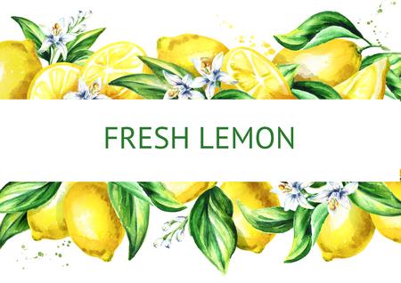 Fresh lemon horizontal illusrtation. Watercolor hand drawn background Standard-Bild