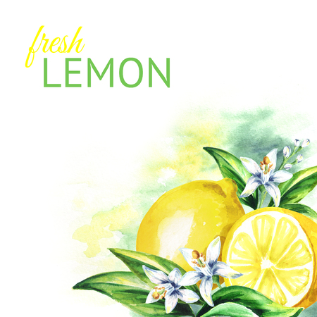 Lemon background. Watercolor hand drawing illustration Stock Photo
