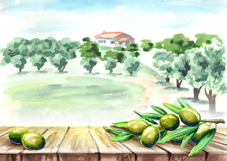Empty table with olive brunch in olive grove landscape. Watercolor hand drawn background Foto de archivo