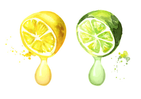 Lemon and lime with juice drop. Watercolor hand drawn illustration