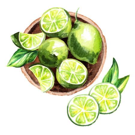 Fresh Lime fruit in the platter top view composition. Watercolor hand drawn illustration