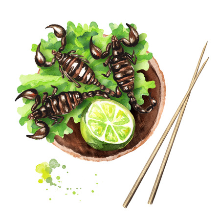 Fried Scorpion with lime and lettuce. Asian food, isolated on white background. Top view. Watercolor hand drawn illustration Stock Photo