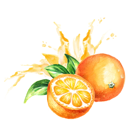 Orange juice splash. Watercolor hand drawn illustration, isolated on white background
