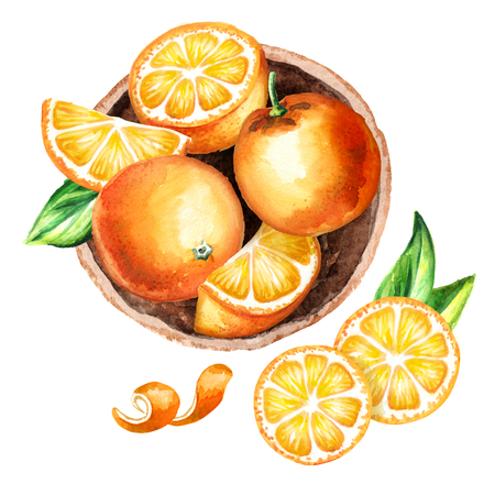 Fresh Orangess fruit in the platter top view composition. Watercolor hand drawing illustration