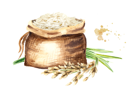 Basmati rice in the bag. Watercolor hand drawn illustration, isolated on white background Stock Photo