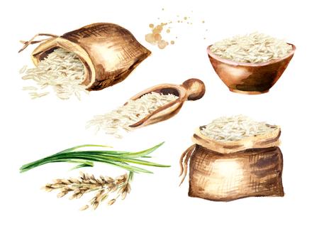 White rice Basmati set. Watercolor hand drawn illustration, isolated on white background