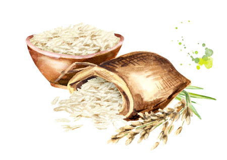 White rice composition. Watercolor hand drawn illustration, isolated on white background