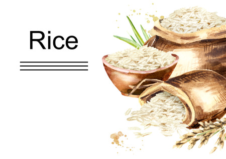 White Rice horizontal template. Watercolor hand drawn illustration, isolated on white background
