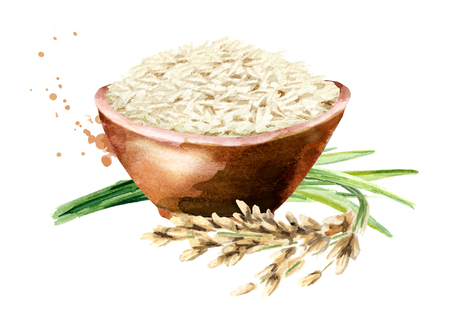 White Rice in a bowl. Watercolor hand drawn illustration, isolated on white background