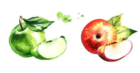 Set with red and green apples. Hand drawn watercolor illustration, isolated on white background
