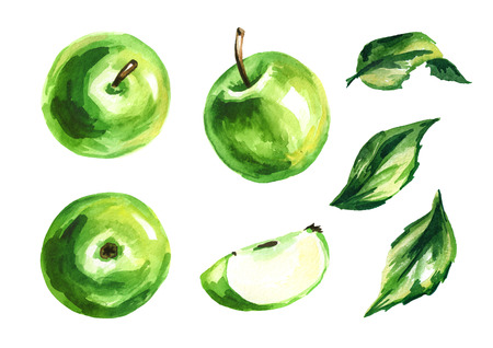 Green Apple set. Hand drawn watercolor illustration, isolated on white background