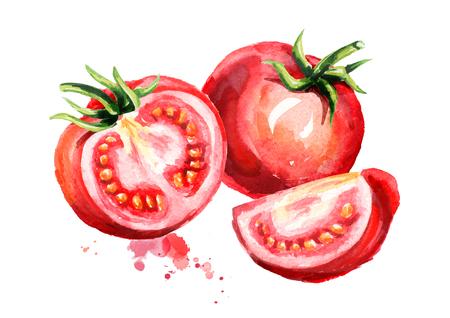 熟したトマトのイラスト。水彩ハンド描き組成物、白い背景に分離 写真素材 - 95964895