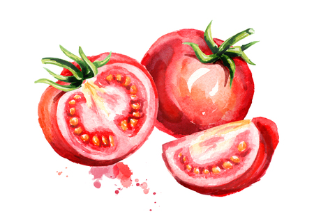 Ripe tomatoes illustration. Watercolor hand drawn composition, isolated on white background