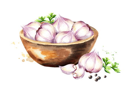 Bowl with garlic. Watercolor hand drawn illustration isolated on white background