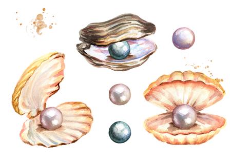 Parels en schelpen instellen Hand getrokken aquarel illustratie geïsoleerd op een witte achtergrond