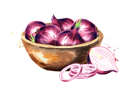 Bowl with onion. Watercolor hand drawn illustration isolated on white background