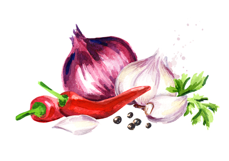 Onion, garlic, chili pepper, parsley and peppercorn. Watercolor hand drawn illustration isolated on white background