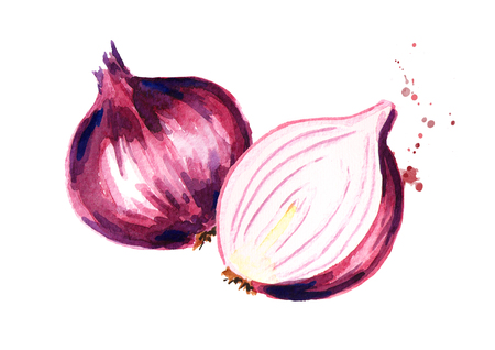 Red sliced ??onion. Watercolor hand drawn illustration, isolated on white background Stock Photo