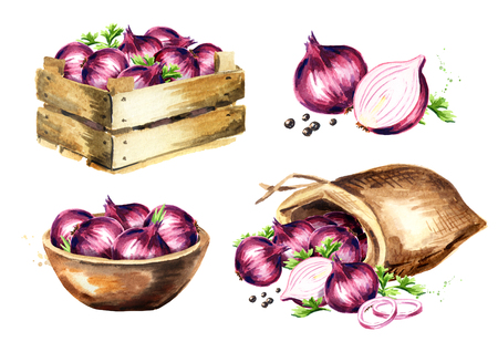 Sack with garlic. Watercolor hand drawn illustration isolated on white background
