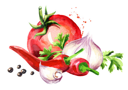 Rip tomato with young garlic, chilli peppers and peppercorns. Watercolor hand drawn illustration isolated on white background Stock Photo