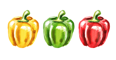 Colors of Bell pepper set. Watercolor hand drawn illustration isolated on white background