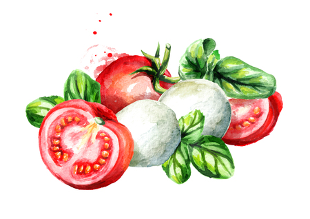 Mozzarella with Basil and tomatoes. Watercolor hand drawn illustration, isolated on white background Stock Photo