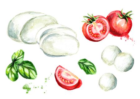 Mozzarella cheese, Basil, tomatoes set. Watercolor hand drawn illustration, isolated on white background Stock Photo