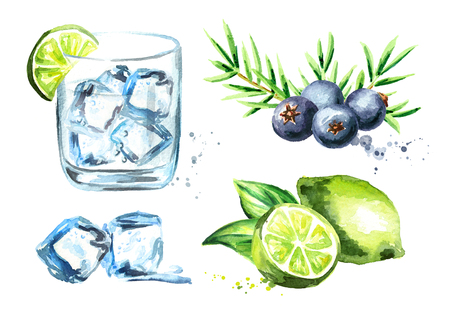 Gin tonik set with ice cubes, lime and juniper berries. Watercolor hand drawn illustration isolated on white background