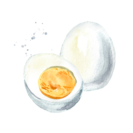 Boiled eggs. Watercolor hand drawn illustration, isolated on white background Stock Photo