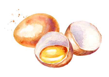 Eggs composition. Watercolor hand drawn illustration   isolated on white background
