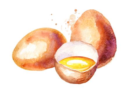 계란 조성. 수채화 손으로 그린 그림, 흰색 배경에 고립 스톡 콘텐츠 - 99613505