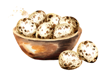 Quail eggs in a wooden bowl. Watercolor hand drawn illustration  isolated on white background