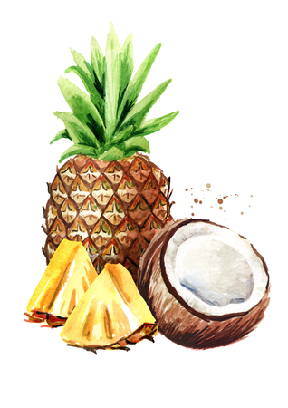 Coconut with pineapple. Pina colada elements. Watercolor hand drawn illustration,  isolated on white background
