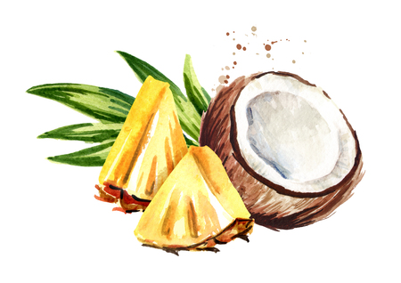 Coconut with sliced pineapple. Pina colada elements. Watercolor hand drawn illustration  isolated on white background 스톡 콘텐츠