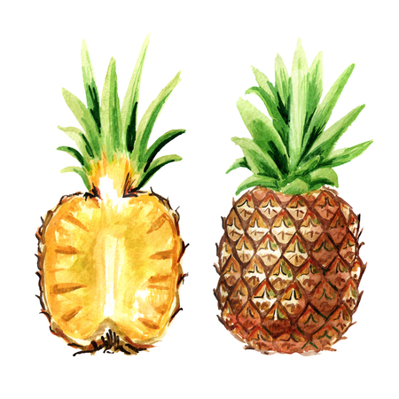 Pineapple whole and cut in half. Watercolor hand drawn illustration,  isolated on white background