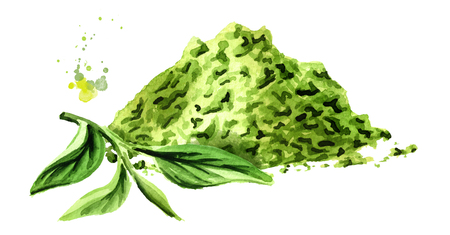 Matcha tea powder with green tea leaves. Watercolor hand drawn illustration,  isolated on white background