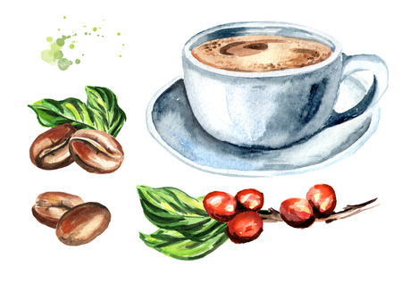Coffee set with beans, coffee bnranch and cup. Watercolor hand drawn illustration, isolated on white background