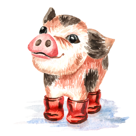 Autumn Little cute funny teacup mini pig in the rubber boots. Watercolor hand drawn illustration, isolated on white background Stock Photo