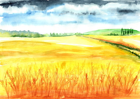 Summer rural landscape. Wheat field. Watercolor hand drawn illustration, background