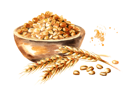 Wheat ear and bowl with grain. Watercolor hand drawn illustration, isolated on white background Фото со стока