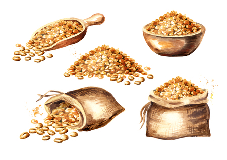 Wheat seeds. Grain set. Watercolor hand drawn illustration, isolated on white background 写真素材 - 103840032