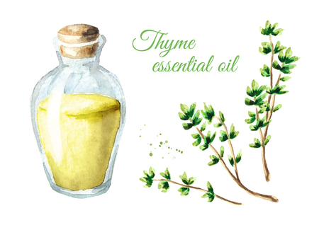 Thyme essential oil set. Watercolor hand drawn illustration, isolated on white background Stock Photo